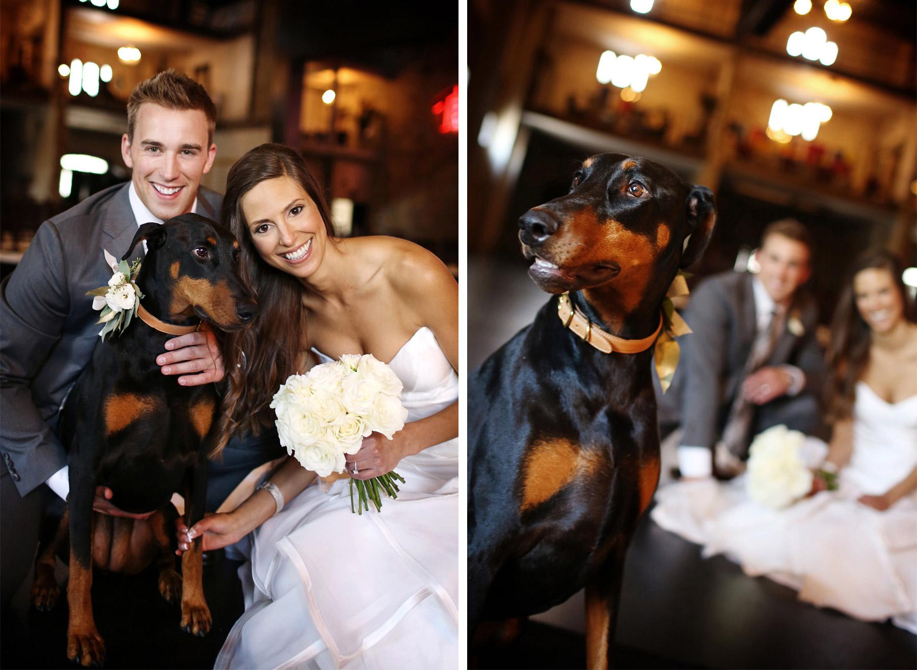 05-Minneapolis-Minnesota-Wedding-Photography-by-Vick-Photography-Aria-Dog-Portrait-Katie-&-Joe.jpg