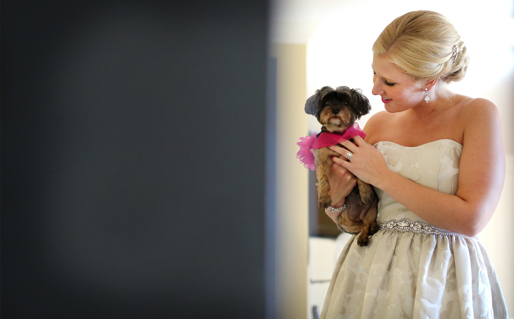 01-Minneapolis-Minnesota-Wedding-Photography-by-Vick-Photography--Calhoun-Beach-Club-Wedding-Dog-Bride-Kristen-&-Nick.jpg