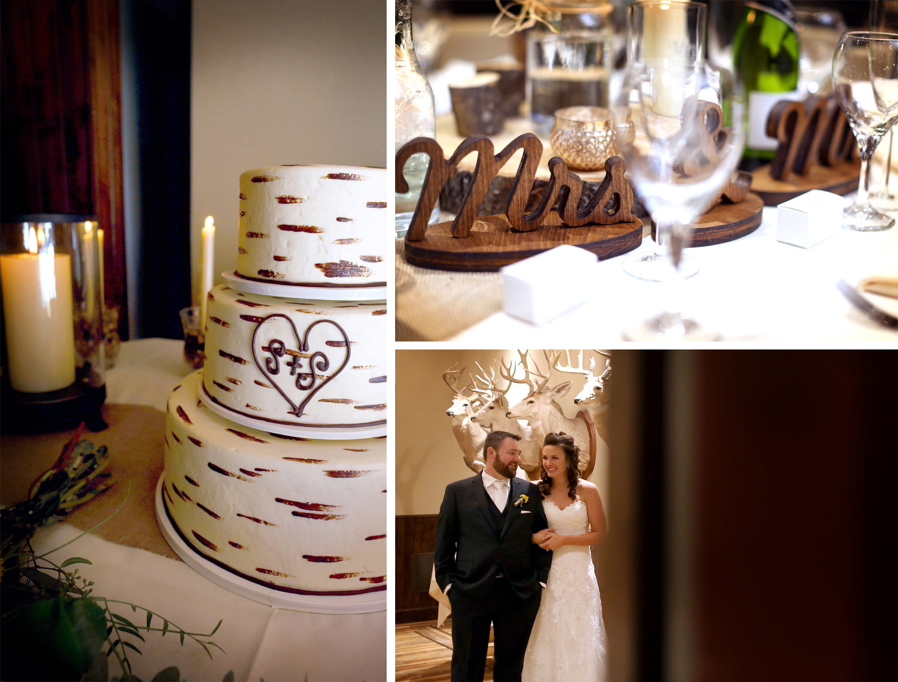 13-Minneapolis-Minnesota-Wedding-Photography-by-Vick-Photography-Prior-Lake-Horse-and-Hunt-Club-Rustic-Birch-Cake-Reception-Night-Sarah-and-Steve.jpg