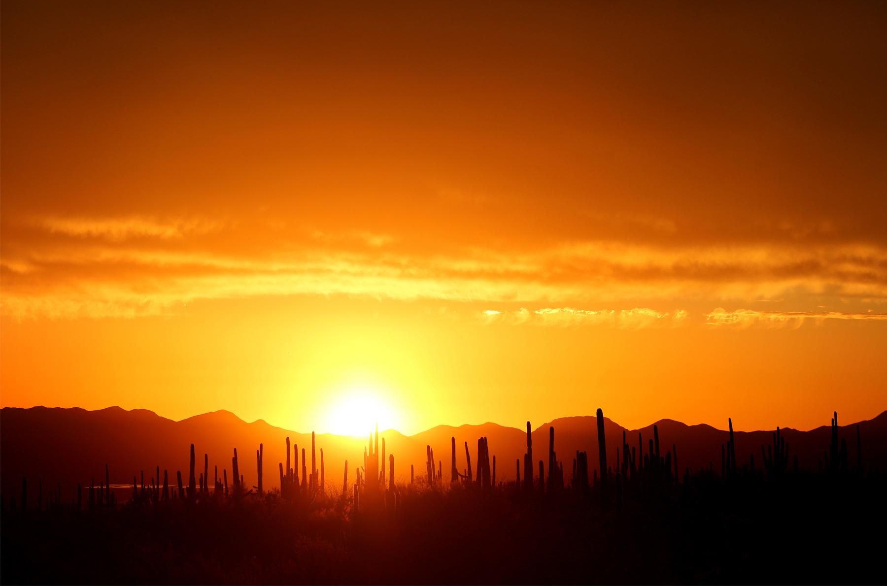 15-Tuscan-Arizona-Wedding-Photography-by-Vick-Photography-Destination-Wedding-Desert-Old-Tucson-Studios-Cactus-Sunset-Night-Photography-Elsa-and-Arthur.jpg