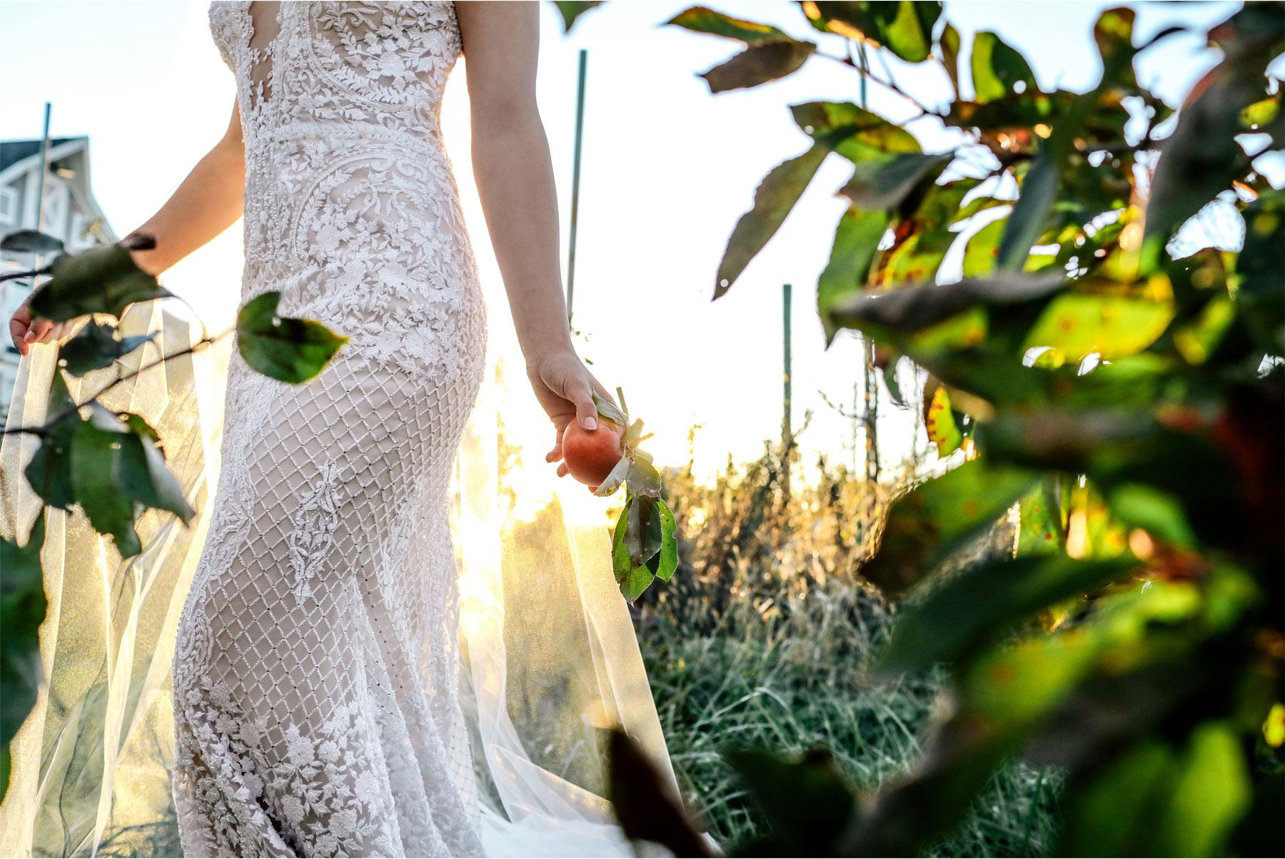 15-Ashery-Lane-Farm-Minneapolis-Minnesota-Wedding-Styled-Shoot-New-Venue-Barn-Orchard-Vineyard-Apple.jpg