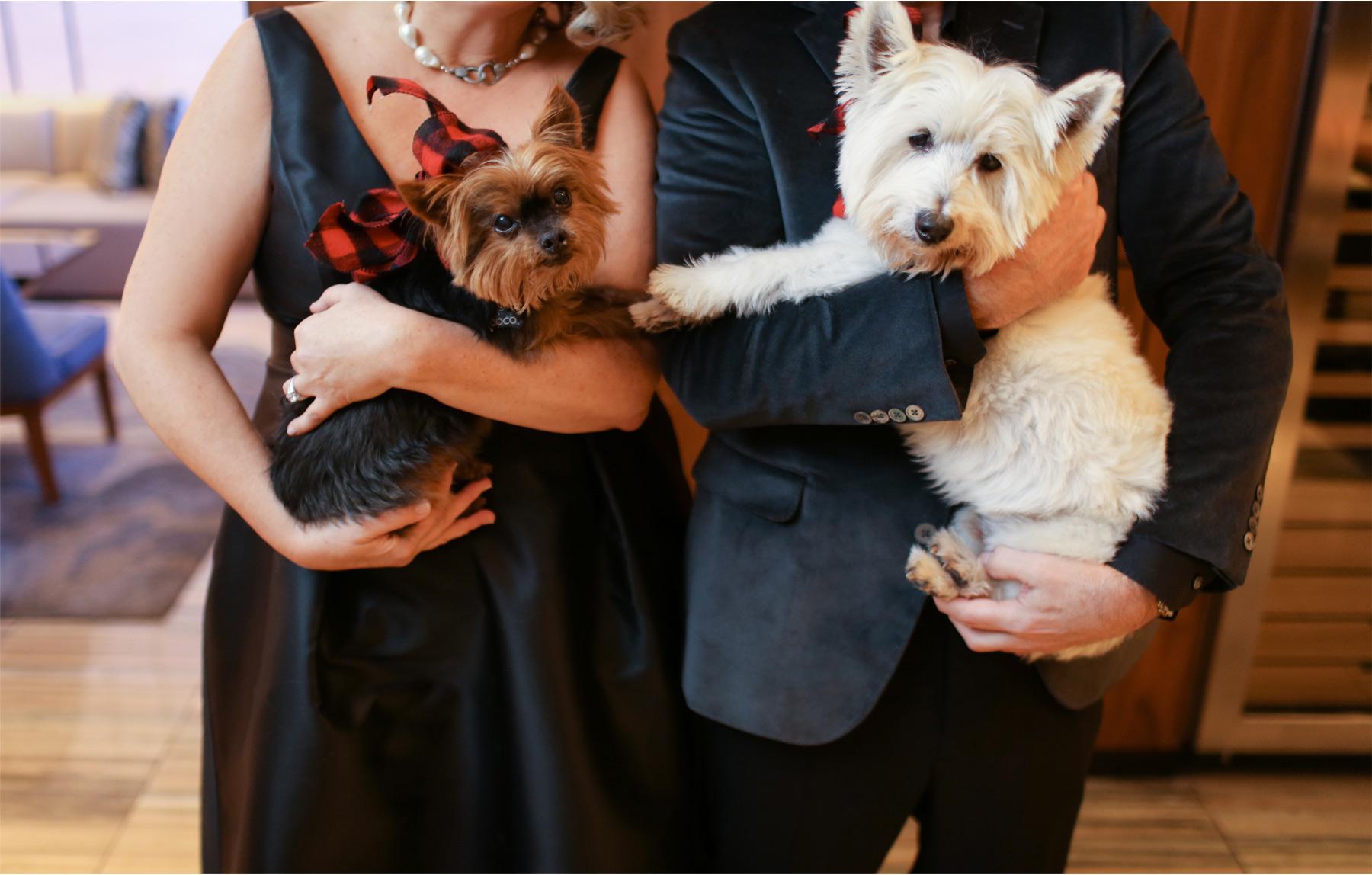 04-Minneapolis-Minnesota-Wedding-Photography-by-Vick-Photography-Loews-Hotel-Dogs-Joan-and-Tim.jpg