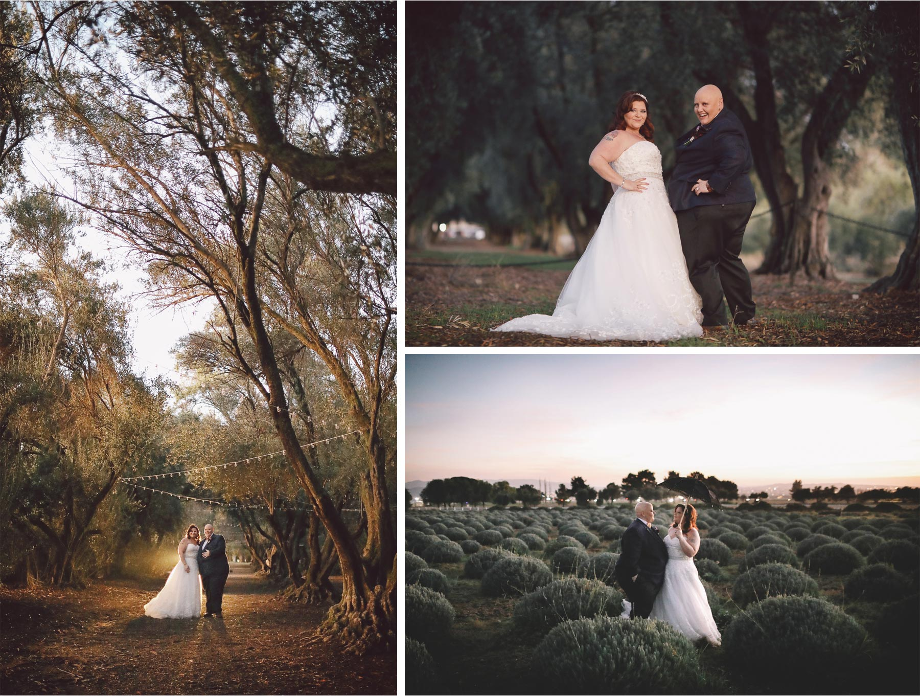 21-Los-Angeles-California-Wedding-Photographer-by-Vick-Photography-Highland-Springs-Ranch-LGBT-Night-Photography-Trees-Lavender-Field-Rebecca-and-Terri.jpg