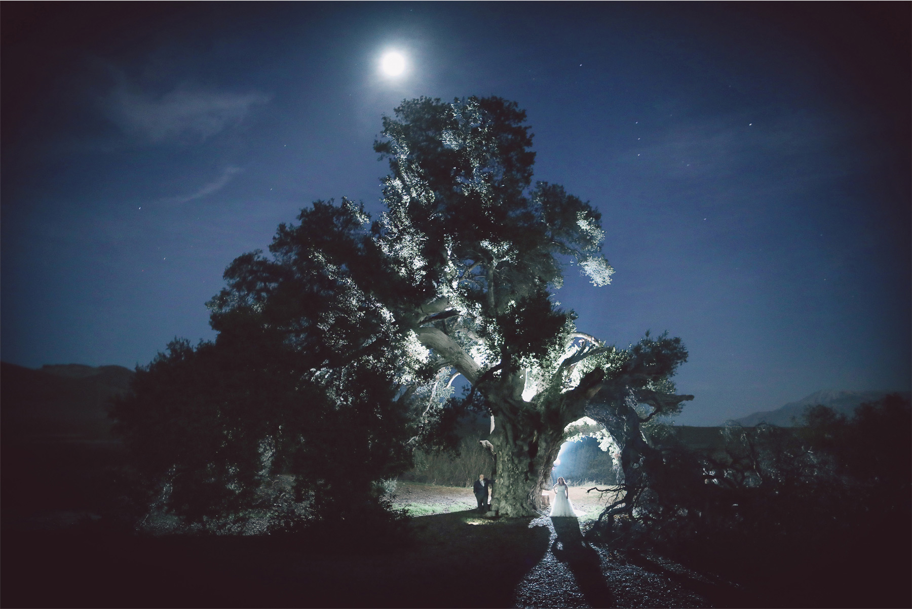 23-Los-Angeles-California-Wedding-Photographer-by-Vick-Photography-Highland-Springs-Ranch-LGBT-Night-Photography-Trees-Rebecca-and-Terri.jpg