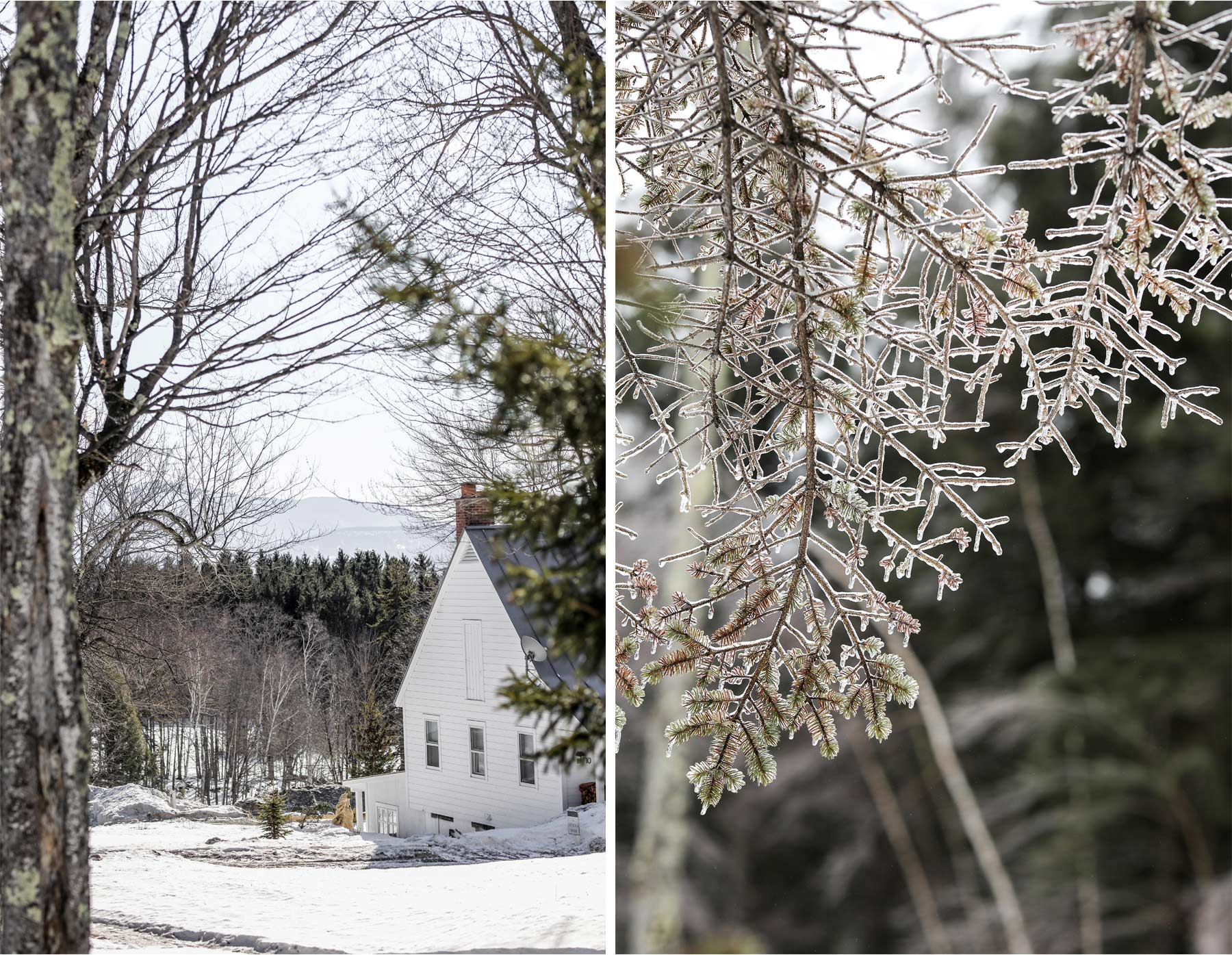 09-Stowe-Vermont-by-Andrew-Vick-Photography-Edson-Hill-Winter-Lodge-Frozen-Trees.jpg