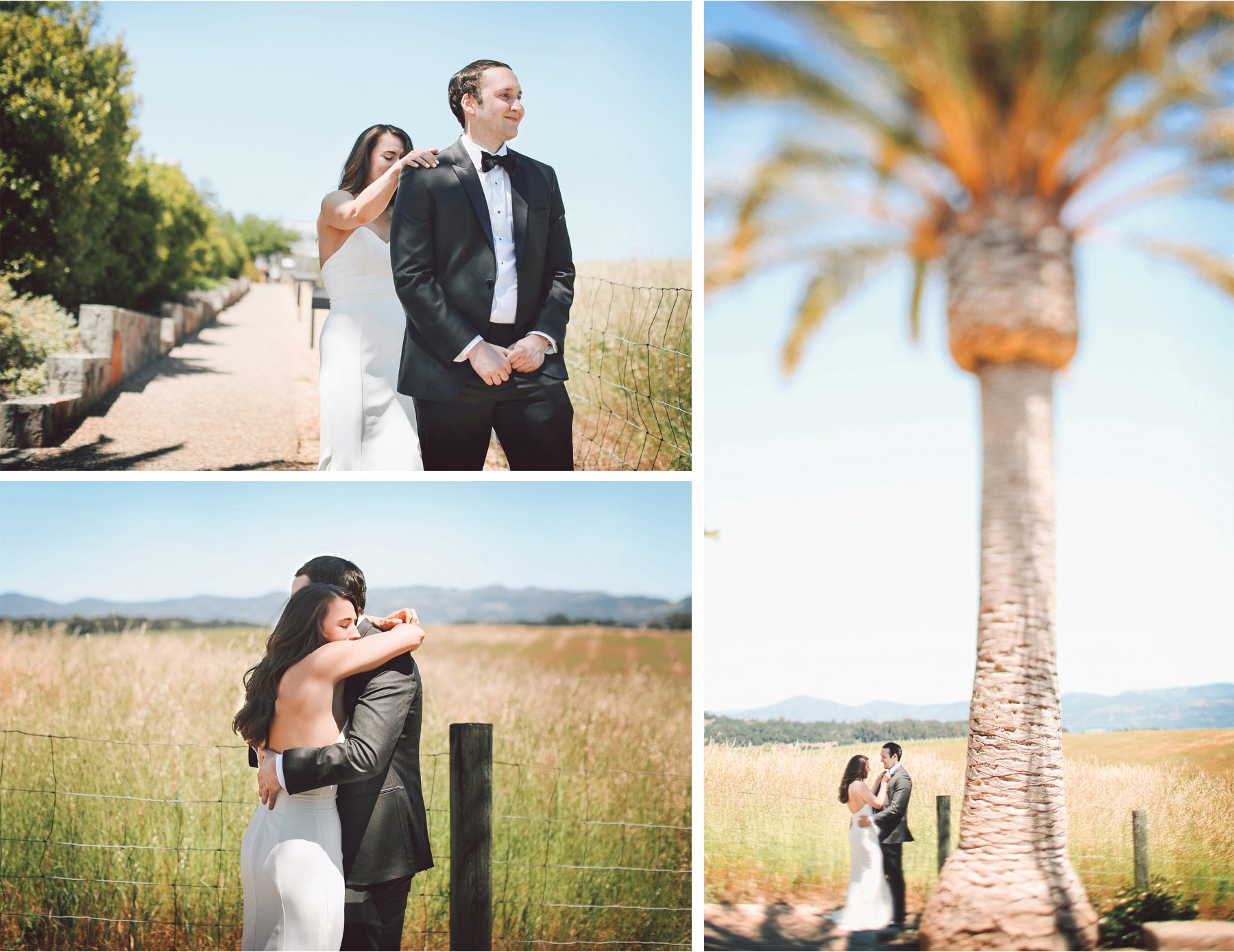 06-Napa-California-Wedding-Photographer-by-Andrew-Vick-Photography-Spring-Destination-Carneros-Resort-and-Spa-First-Meeting-Look-Bride-Groom-Embrace-Palm-Tree-Vintage-Alex-and-Roger.jpg