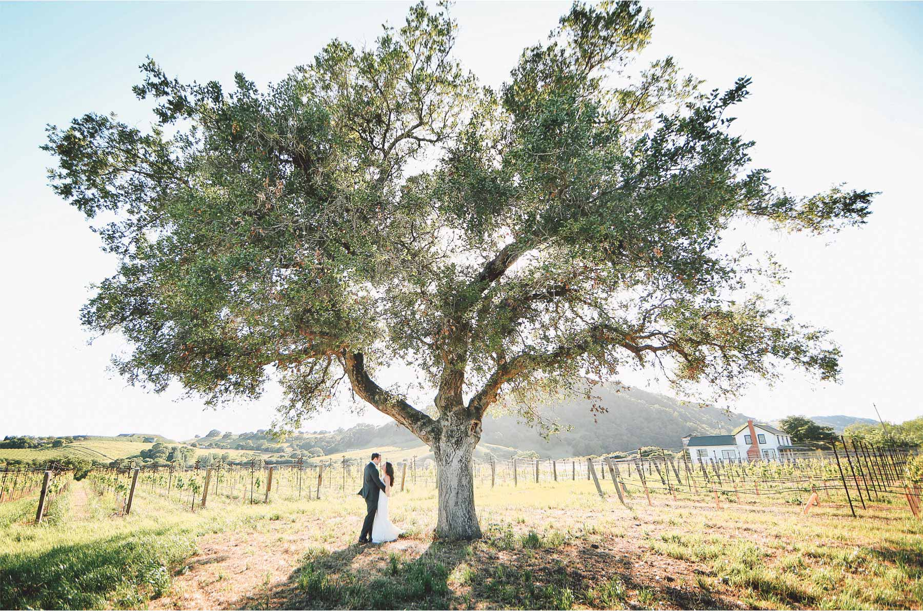 21-Napa-California-Wedding-Photographer-by-Andrew-Vick-Photography-Spring-Destination-Carneros-Resort-and-Spa-Bride-Groom-Vineyard-Winery-Vintage-Alex-and-Roger.jpg