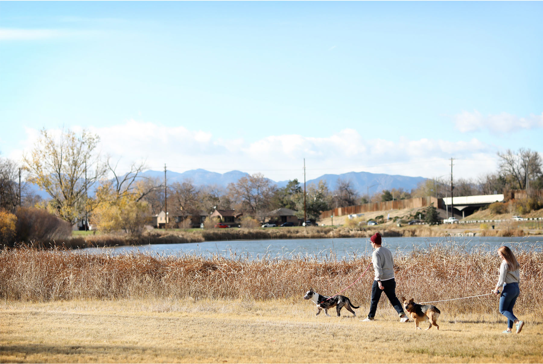 02-Vick-Photography-Fly-to-You-Engagement-Session-Denver-Colorado-Dog-Walk-Field-Danielle-and-Tom.jpg