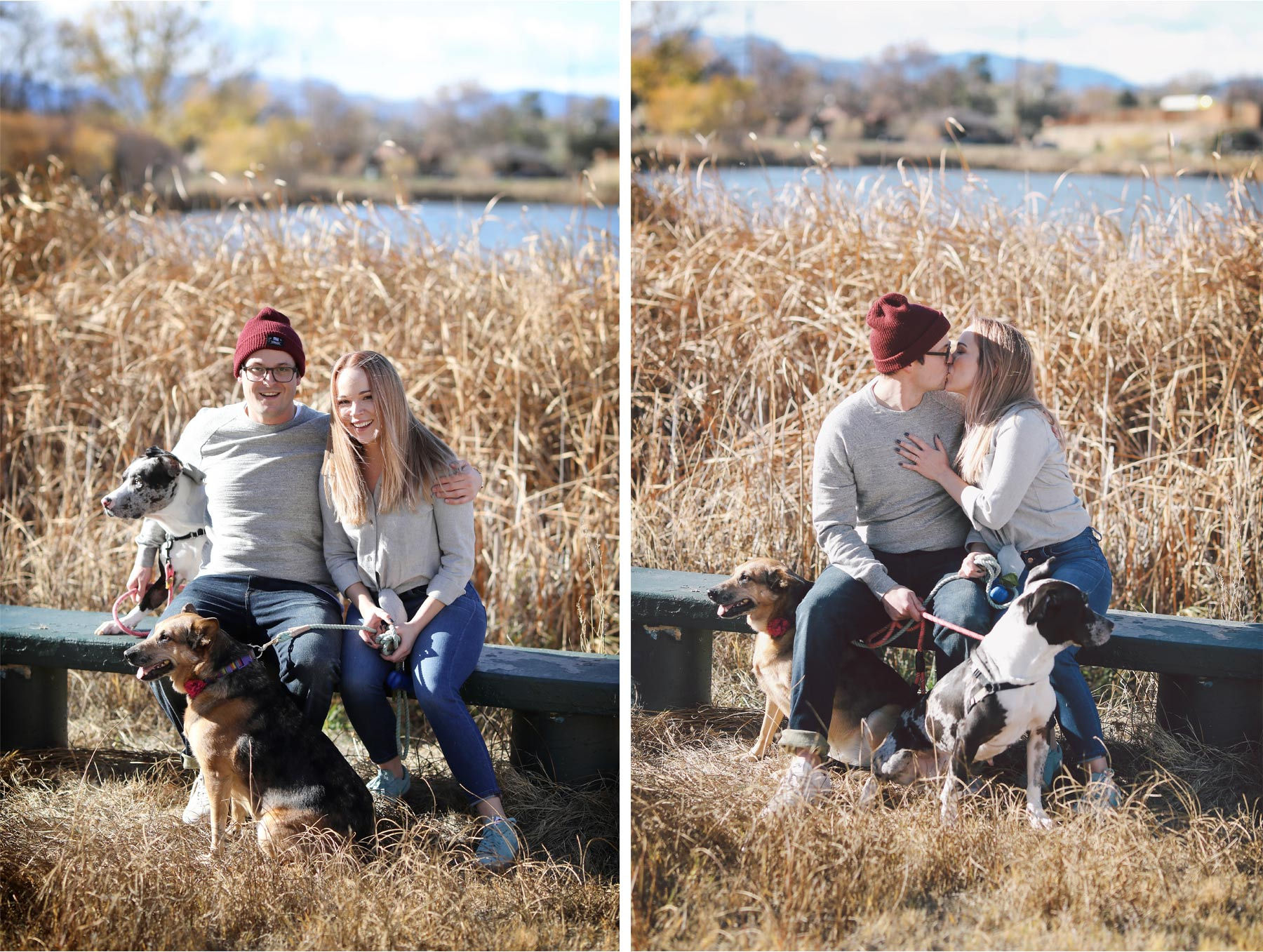 03-Vick-Photography-Fly-to-You-Engagement-Session-Denver-Colorado-Dog-Walk-Field-Danielle-and-Tom.jpg