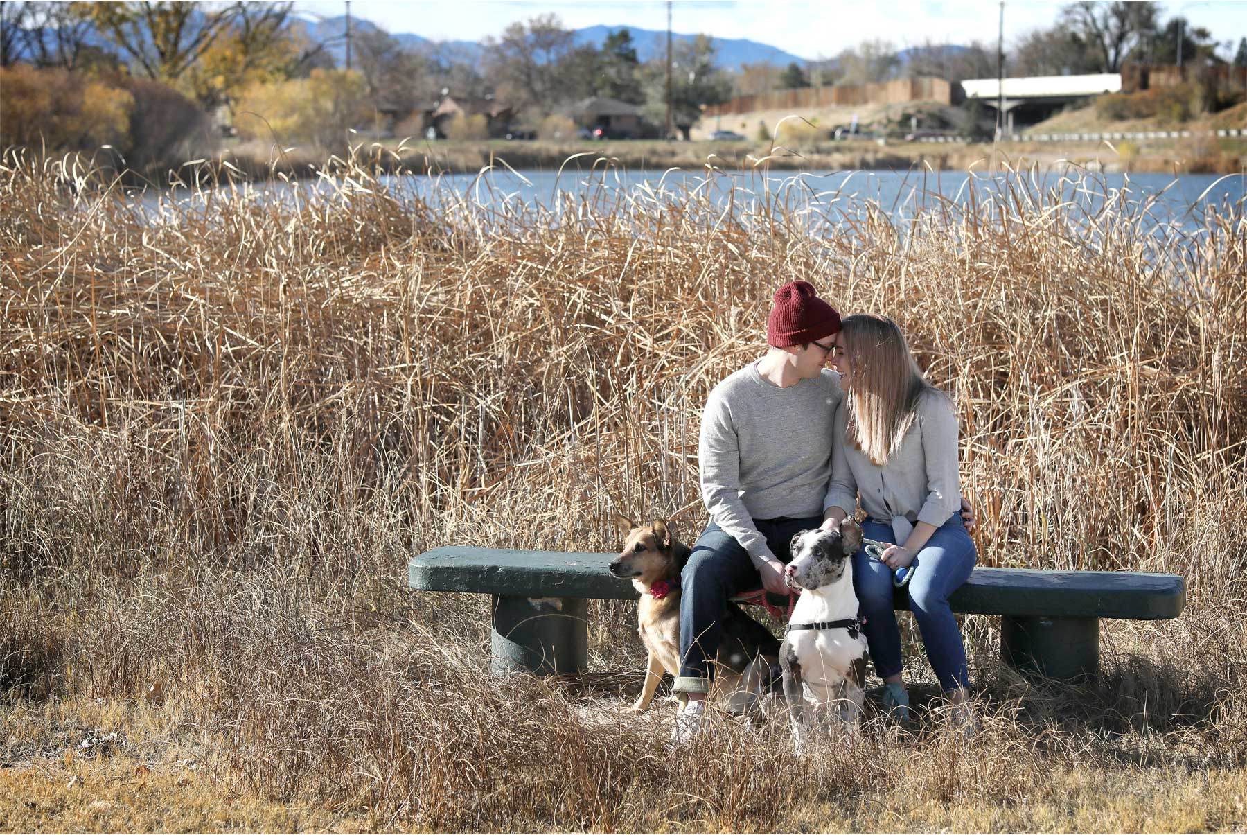 04-Vick-Photography-Fly-to-You-Engagement-Session-Denver-Colorado-Dog-Walk-Field-Danielle-and-Tom.jpg