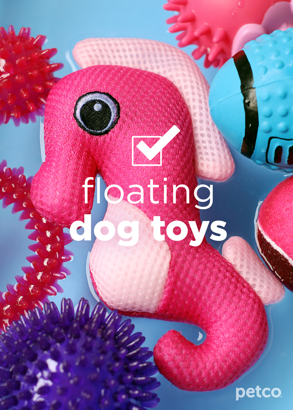 Floating-dog-toys.jpg