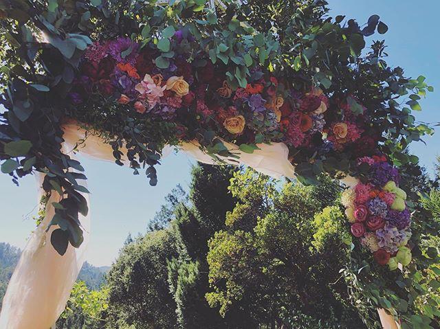 Jewl Tone just might be my new favorite color combination 😍  #sarahbellafloraldesign #weddingelopement #flowerarch #napavalleywedding #napavalleyflorist #hydrangea #dahlia #moodybluesroses #eucalyptus #shimmerroses #sprayrose #limonadaroses