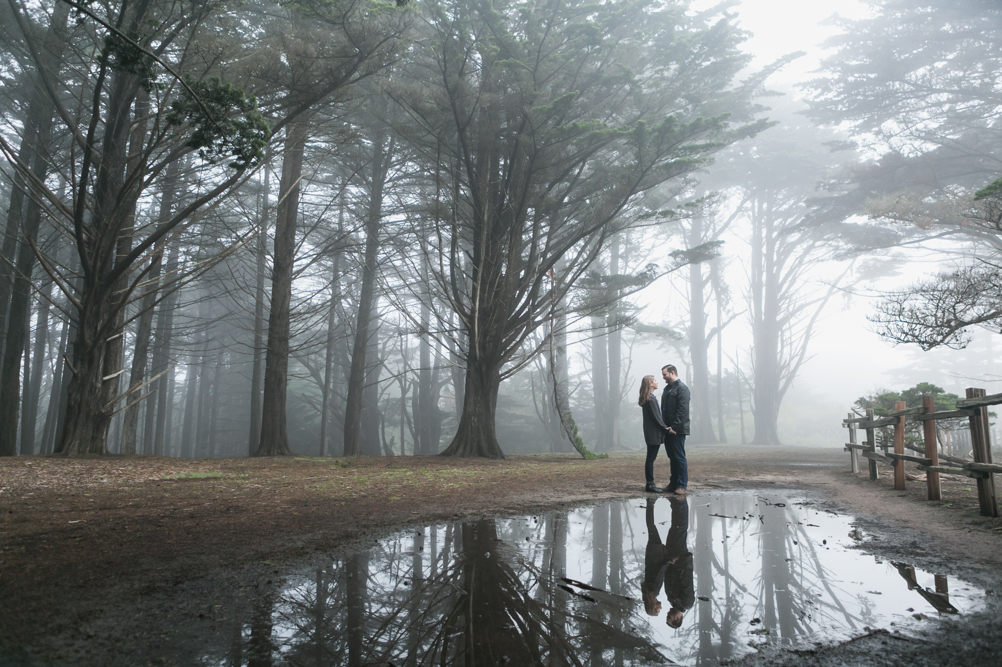 Fitzgerald-Marine-Reserve-Engagement-Reflection-Fog-Moss-Beach.jpg