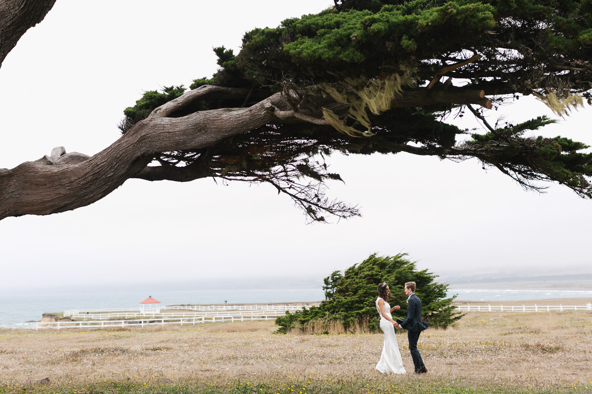 Bride and groom see each other for the first time on their wedding day in meadow