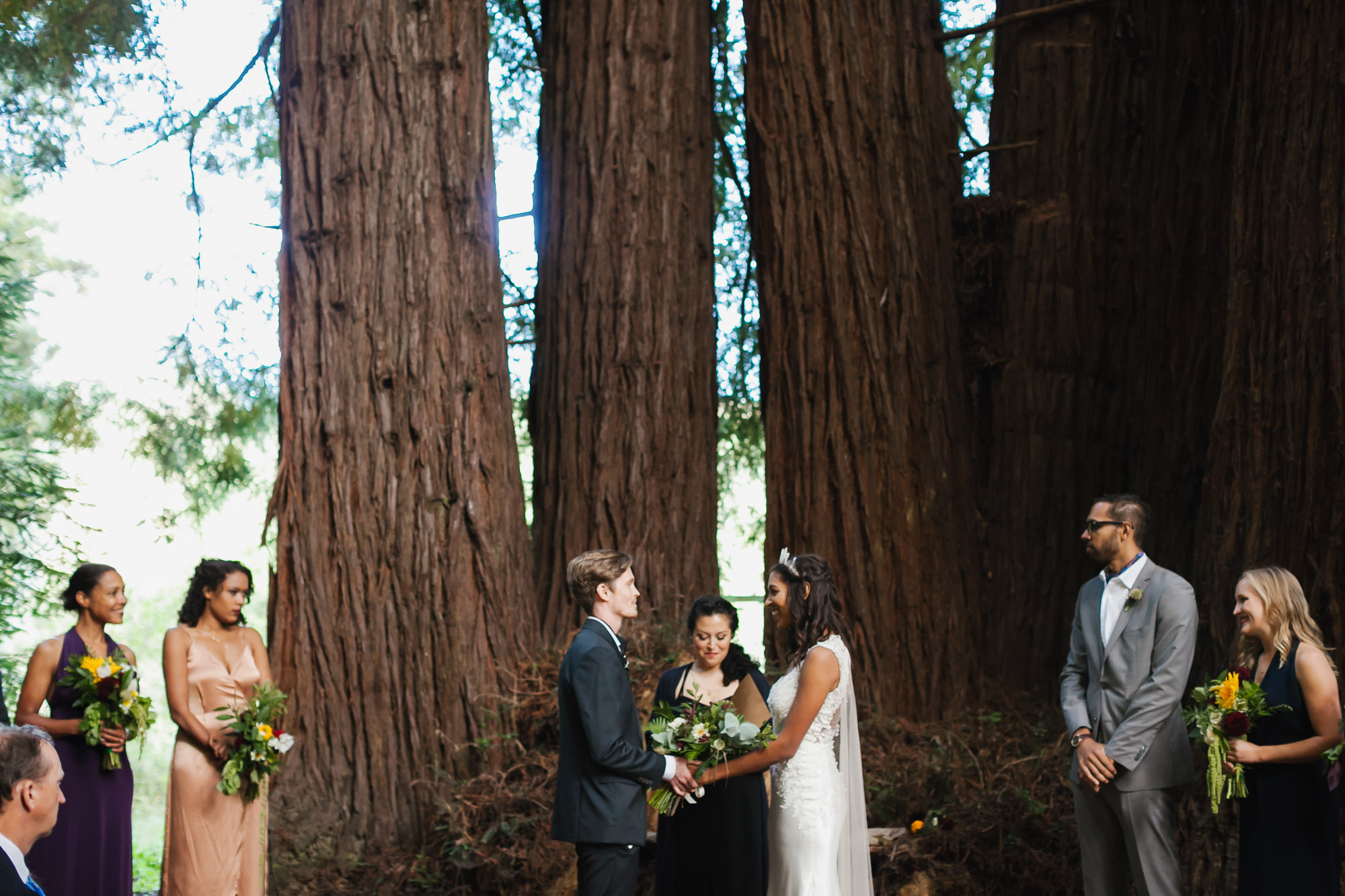 Wedding ceremony under giant redwood trees