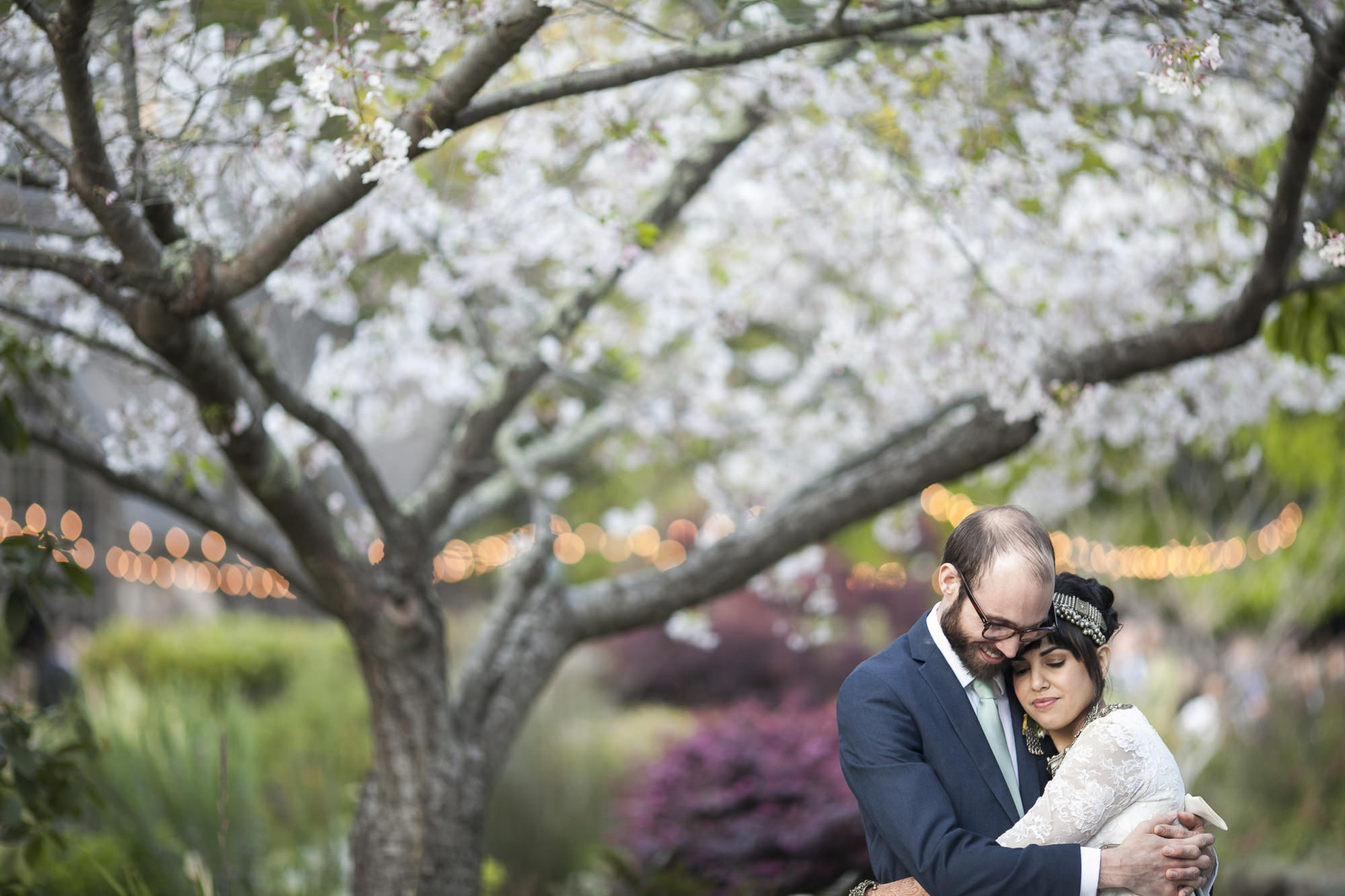 Wedding couple snuggle in front of blooming cherry blossom tree