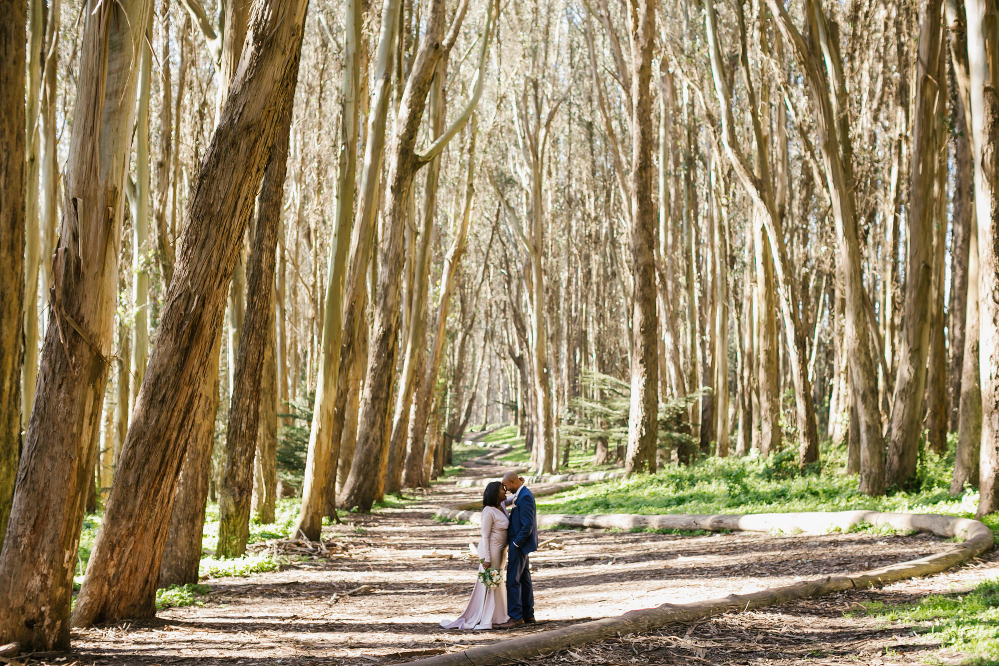 A wedding couple stand together at Wood Line in the Presidio among the eucalyptus trees.
