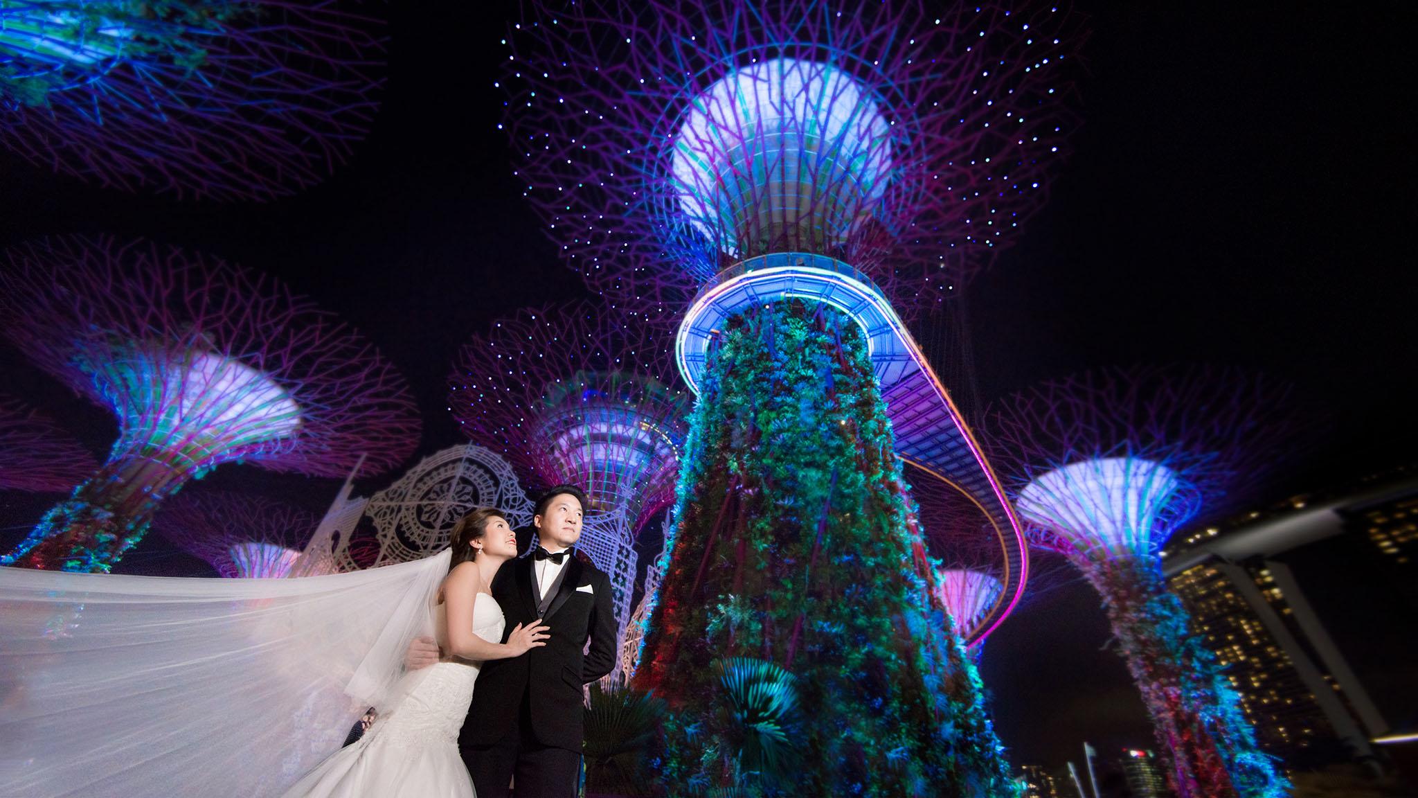 3 Pre wedding garden by the bay 02.JPG