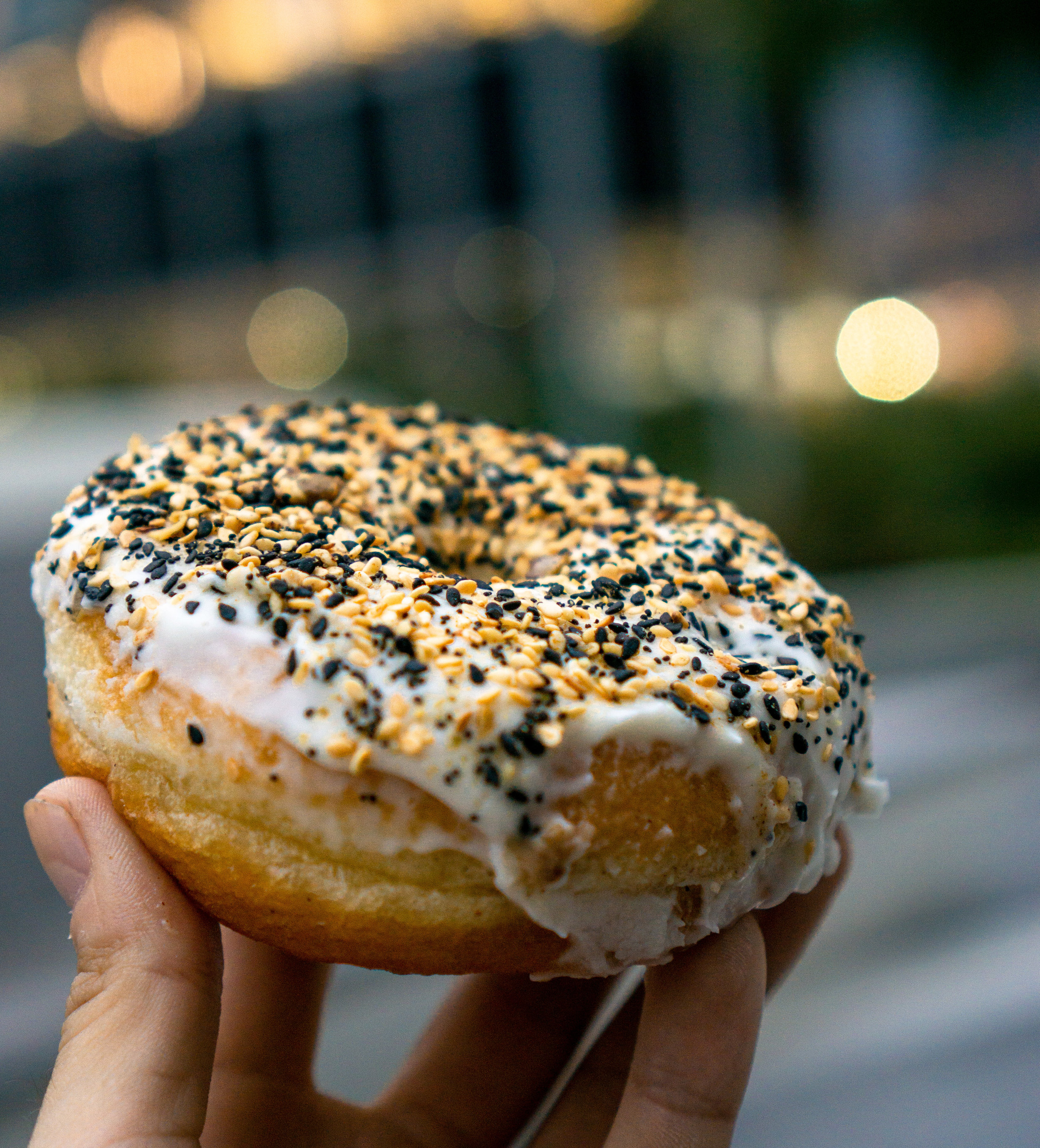 I'm not entirely sure I can describe to you how irrelevant bagels have become to me since this doughnut
