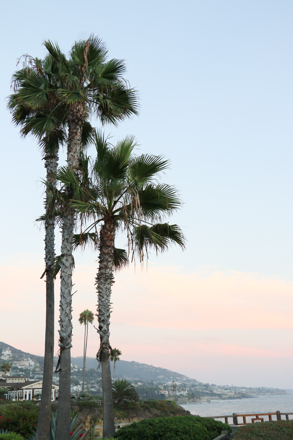 The Brand Stylist in California-23.jpg