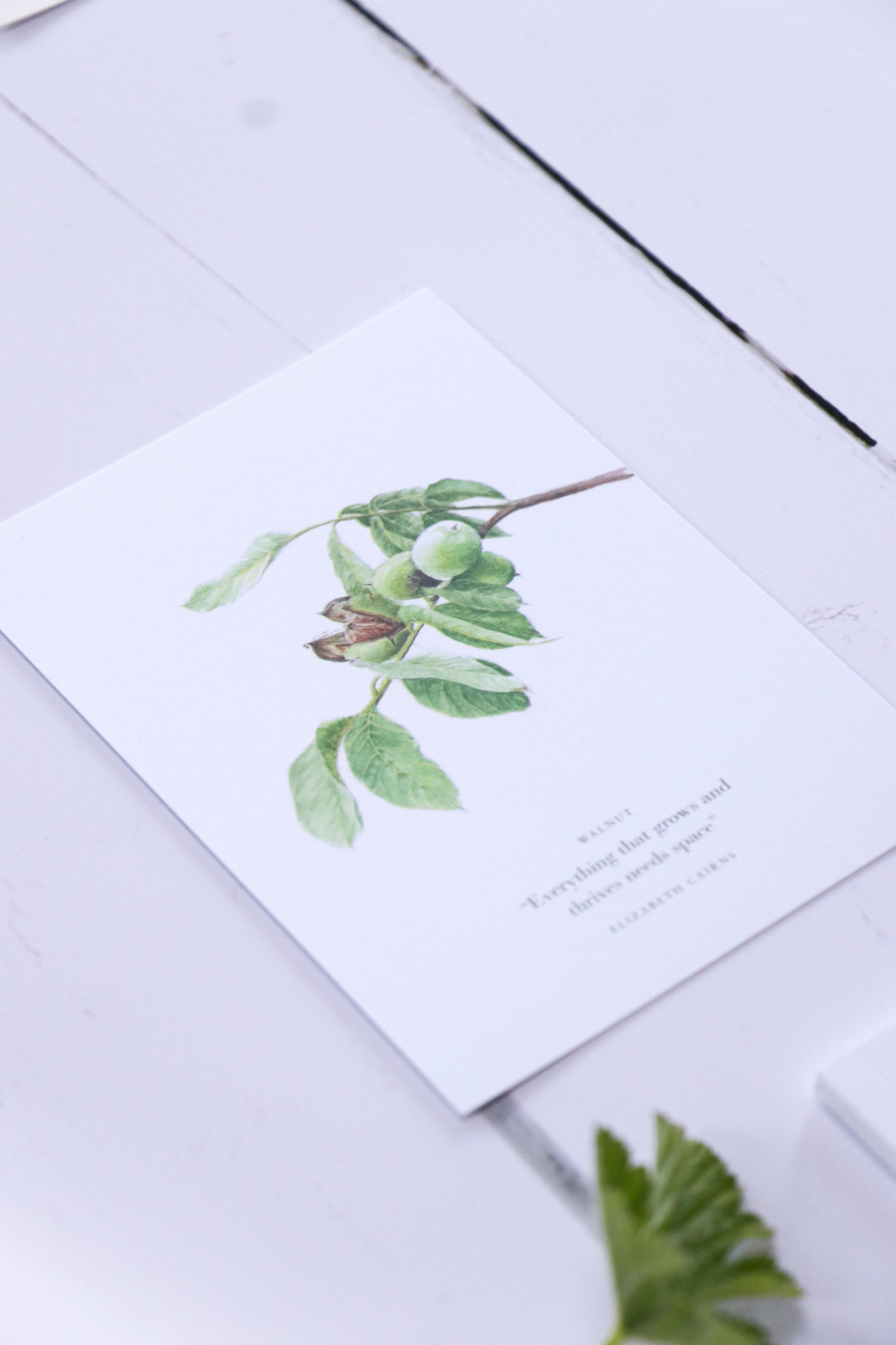 the empowered entrepreneur book elizabeth cairns-14.jpg