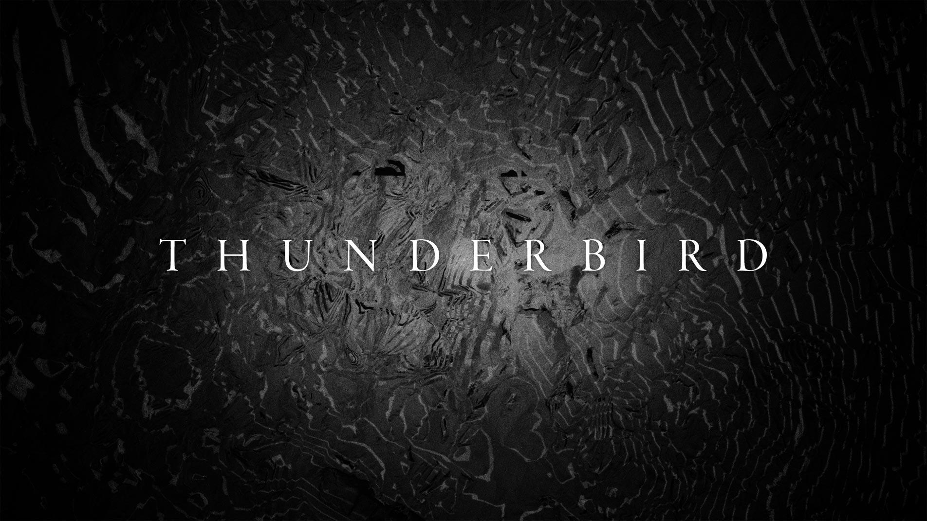 AC_Website_Thumbnails_Thunderbird.jpg
