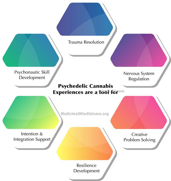 Cannabis-as-a-Tool-web.jpg