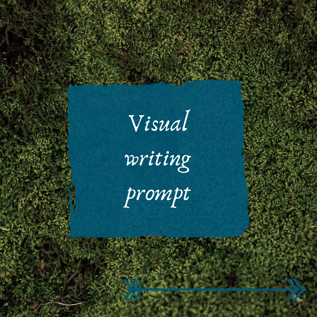 VisualWritingPrompt.PNG
