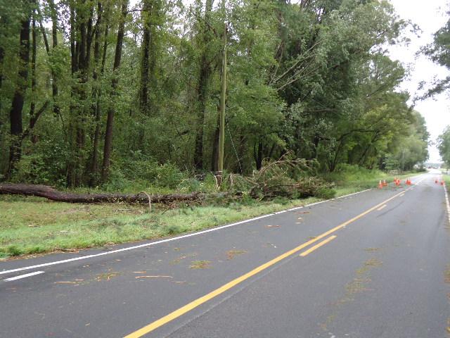 Tree takes down power line on Hugo Road
