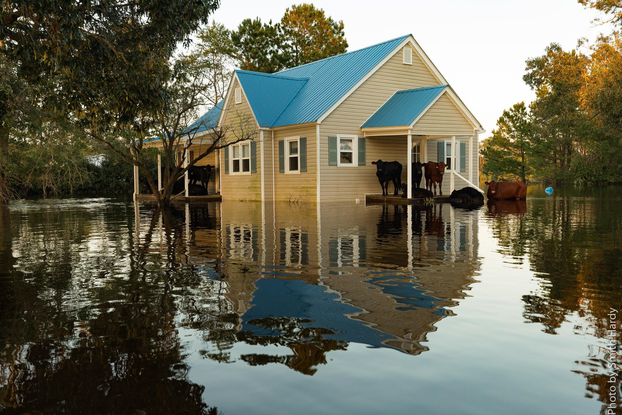 Hurricane Florence Updates (35 of 63).jpg