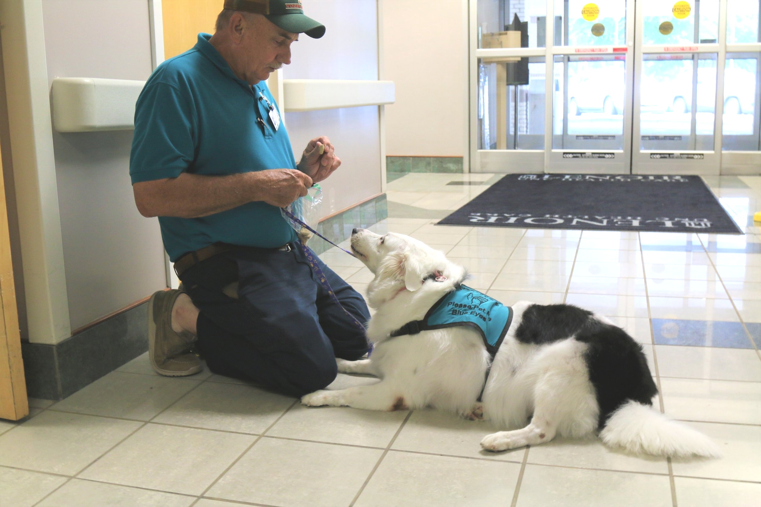 Fred Massengill gives Blue Eyes a dog biscuit before they start volunteering last week at UNC Lenoir Health Care. Photo by Janet Sutton / Neuse News