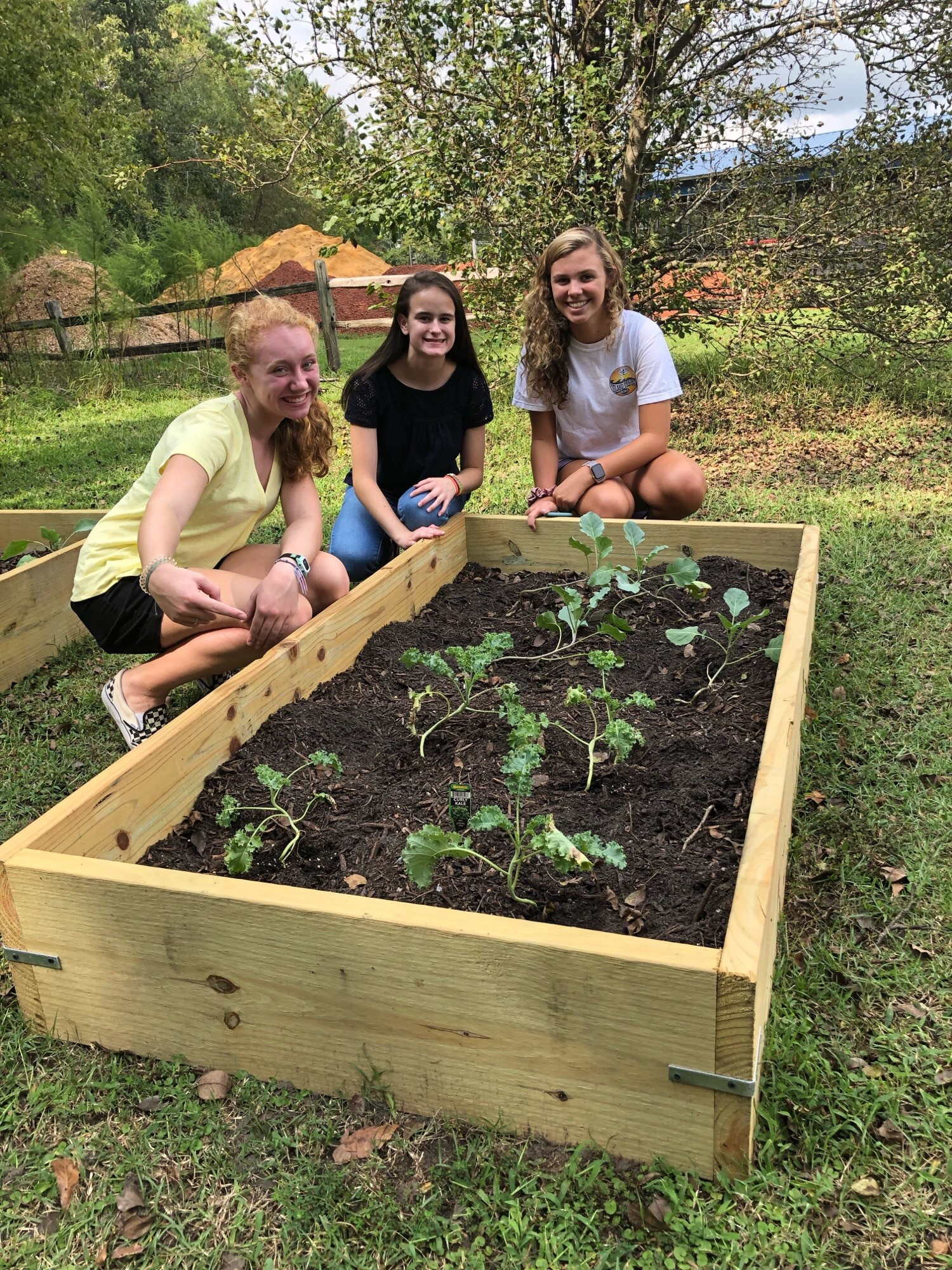 Parrott 9th graders tend a raised bed of broccoli in the school's new vegetable garden (Left to right) Killen Harper, Mary Frances Fields, and Kat Owsley. 252-560-5893 (c )