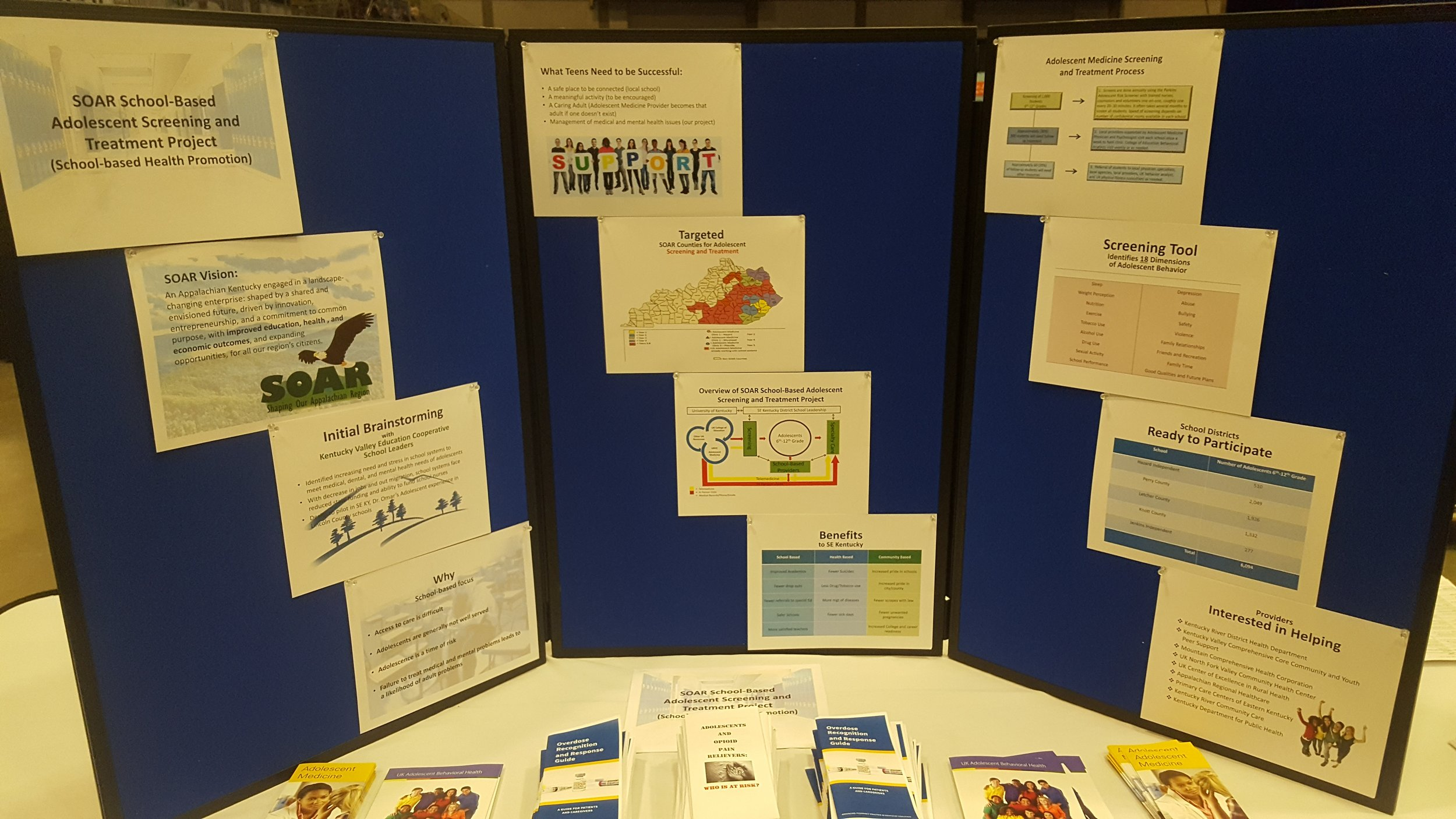 SOAR Scool-Based Adolescent Screening and Treatment Project.jpg