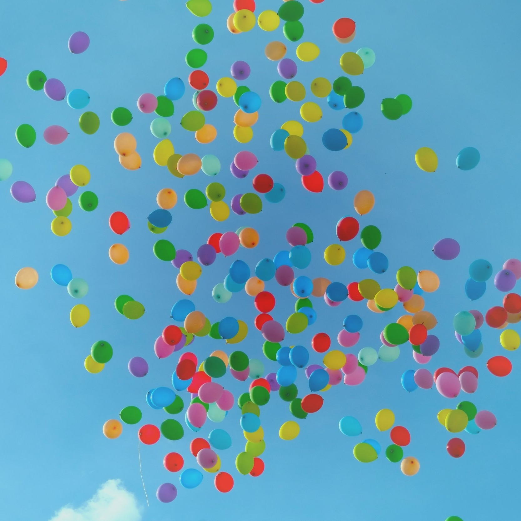 Balloons in the sky.jpg