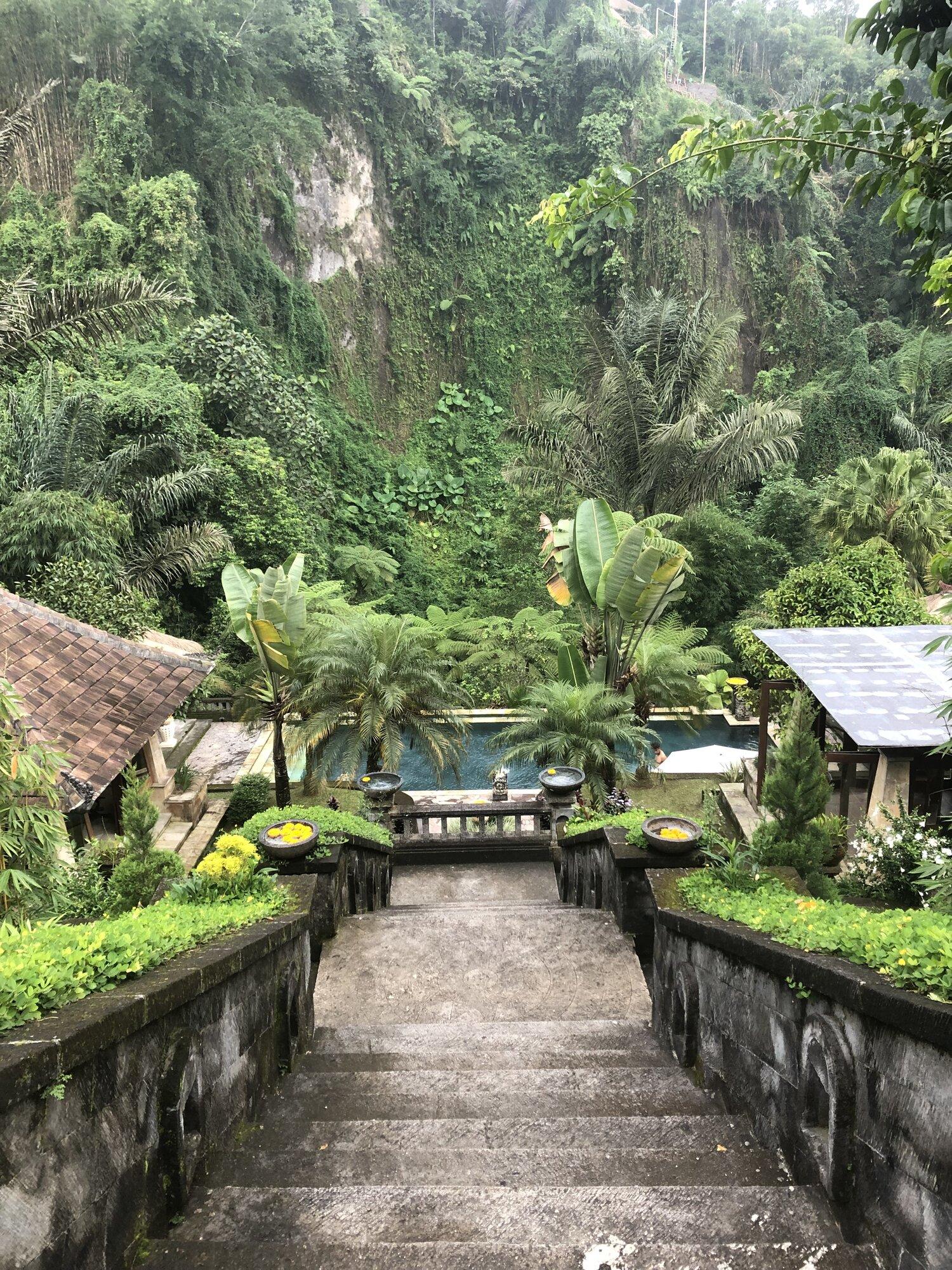 Bloom Yoga Room_Bali.jpeg