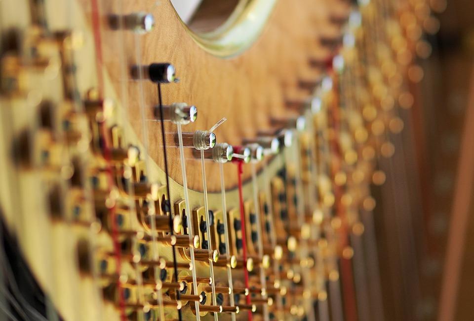 Jane Allen, principal harp - Biography Forthcoming.