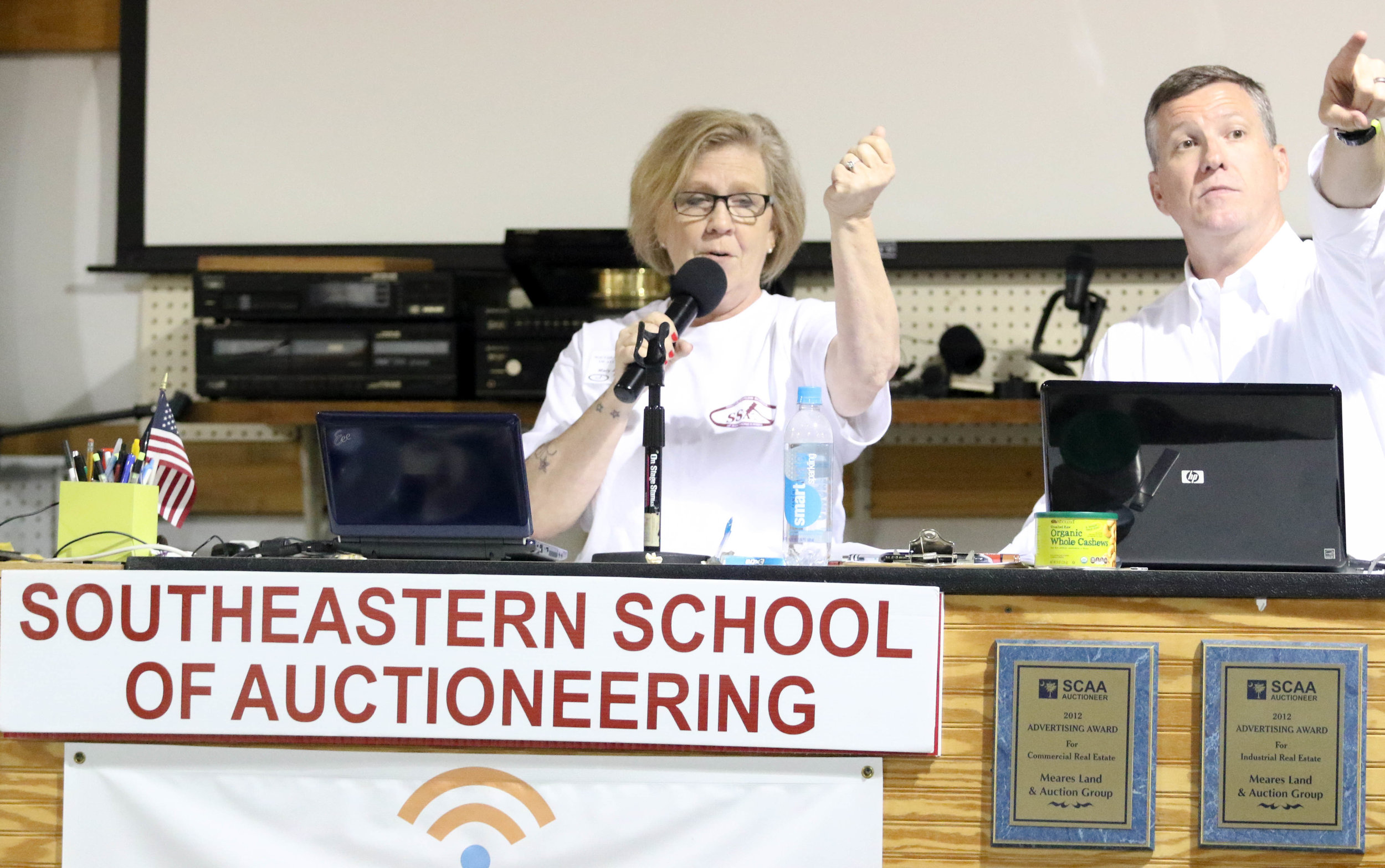 Learning to Auctioneer