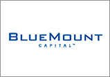 907733.logo-bluemount.jpg