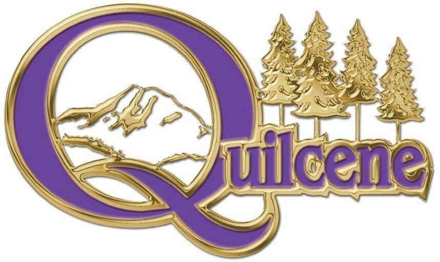QSD Logo.jpg