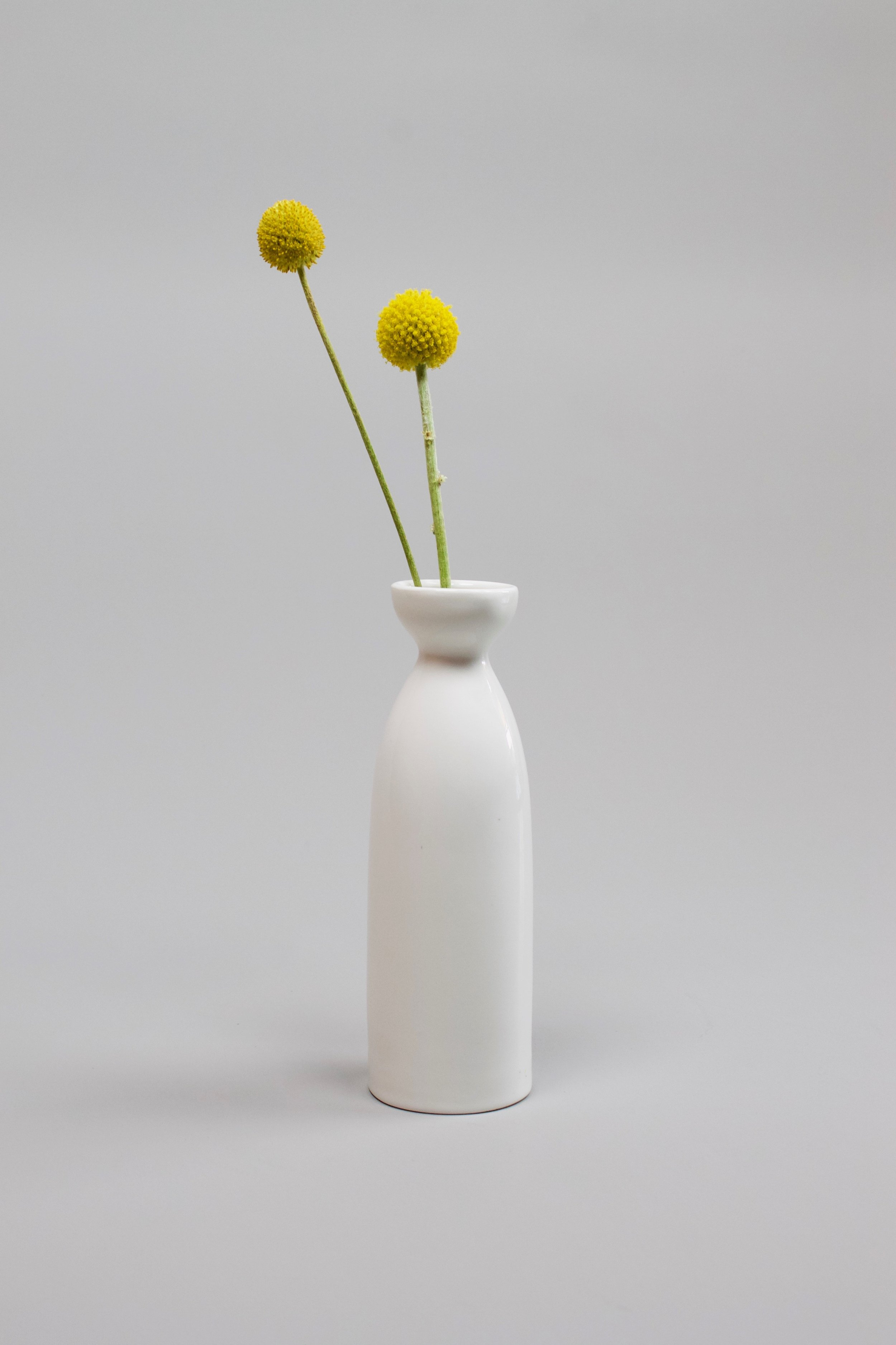 White sake vase   Originally used for pouring sake, but also suitable as a flower vase. Found in a thrift store.