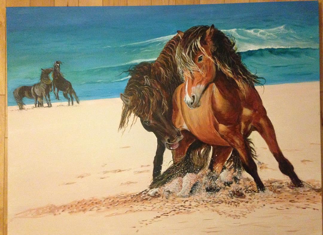 Sable Island Horses.jpg