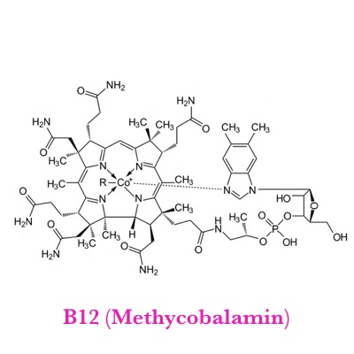 Base Shot B12 (Methycobalomin)   What It Does?   Supports Neurological function, involved in the production of DNA and RNA, RBC production, Iron function.   What It's Good For?   Anemia, fatigue, Constipation, loss of appetite/weight, numbness and tingling of hands and feet, depression, dementia, Poor Memory, Cold Sores