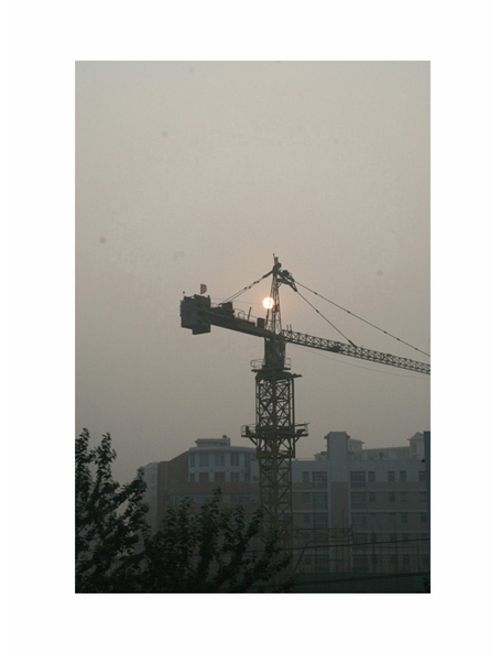 999 Cranes 07 by MatthewBrandt.com