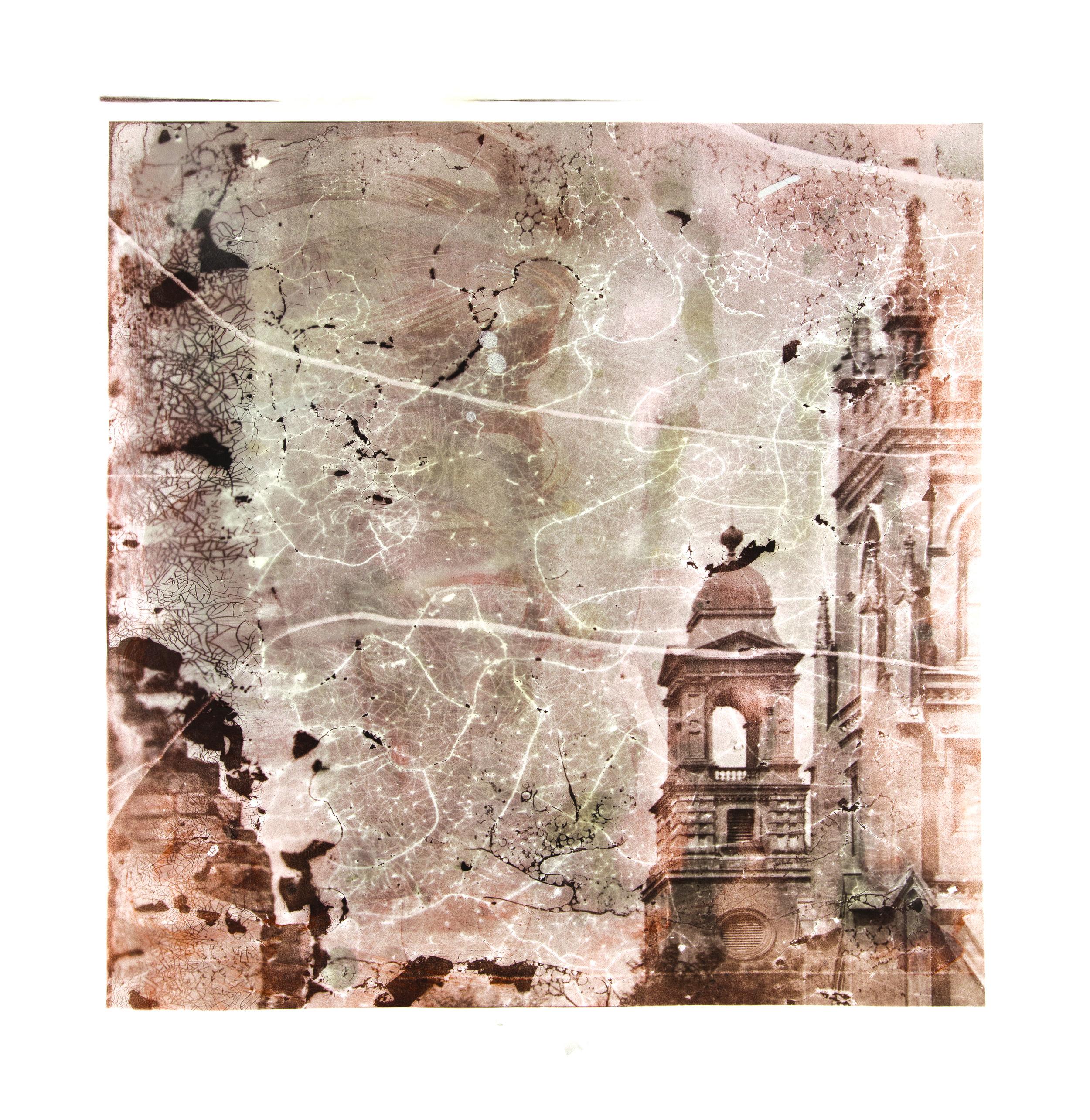 1864, 03027ab2  2017  peaches, eggs, salt, sugar, flour, cinnamon, butter,  and silver nitrate on paper (albumen print)  45 x 45 inches