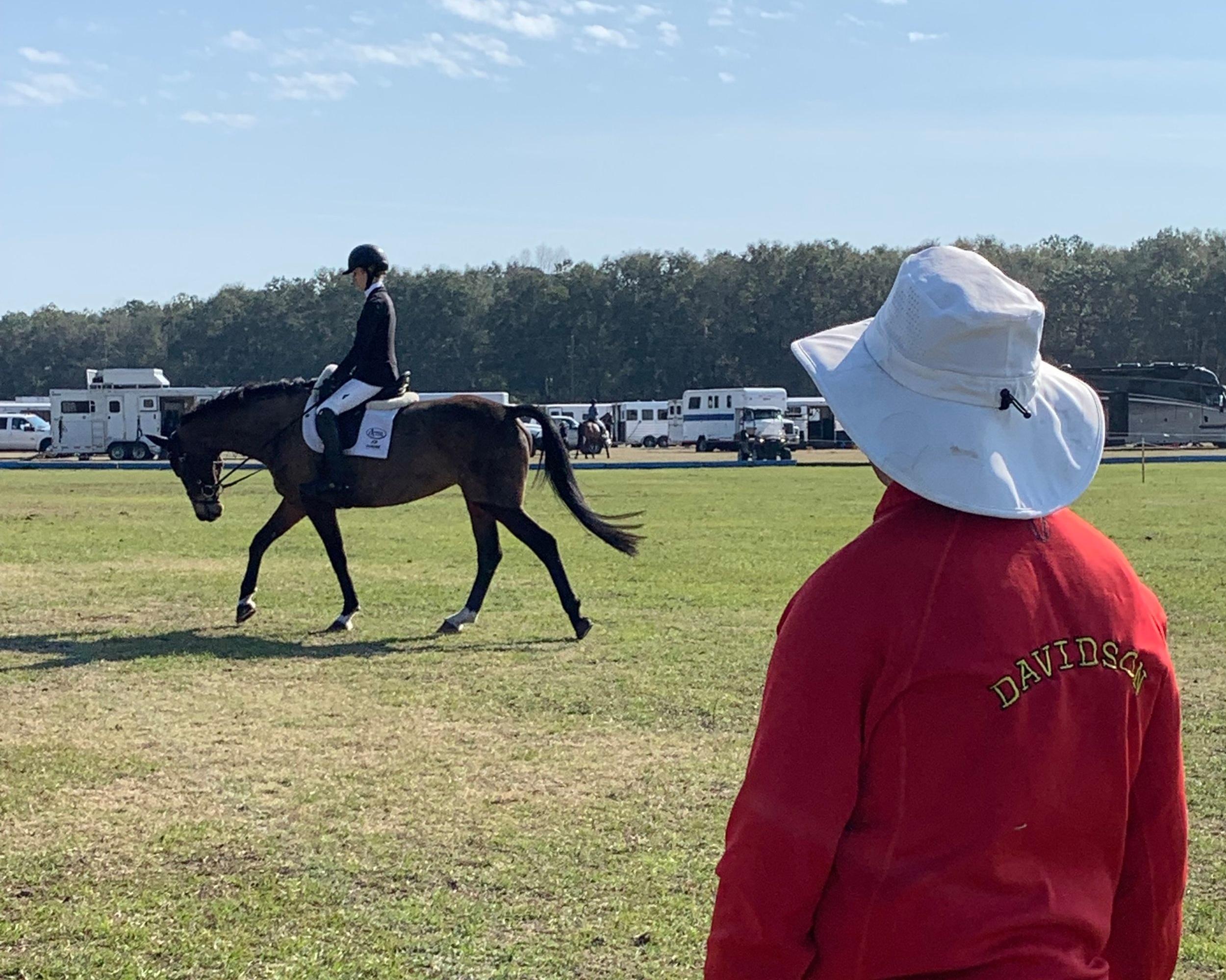 bdj-equestrian-coaching-IMG_6831.jpg