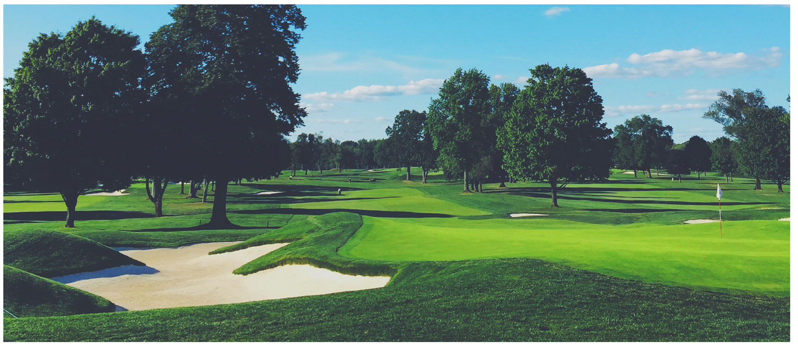 Golf2019.jpg