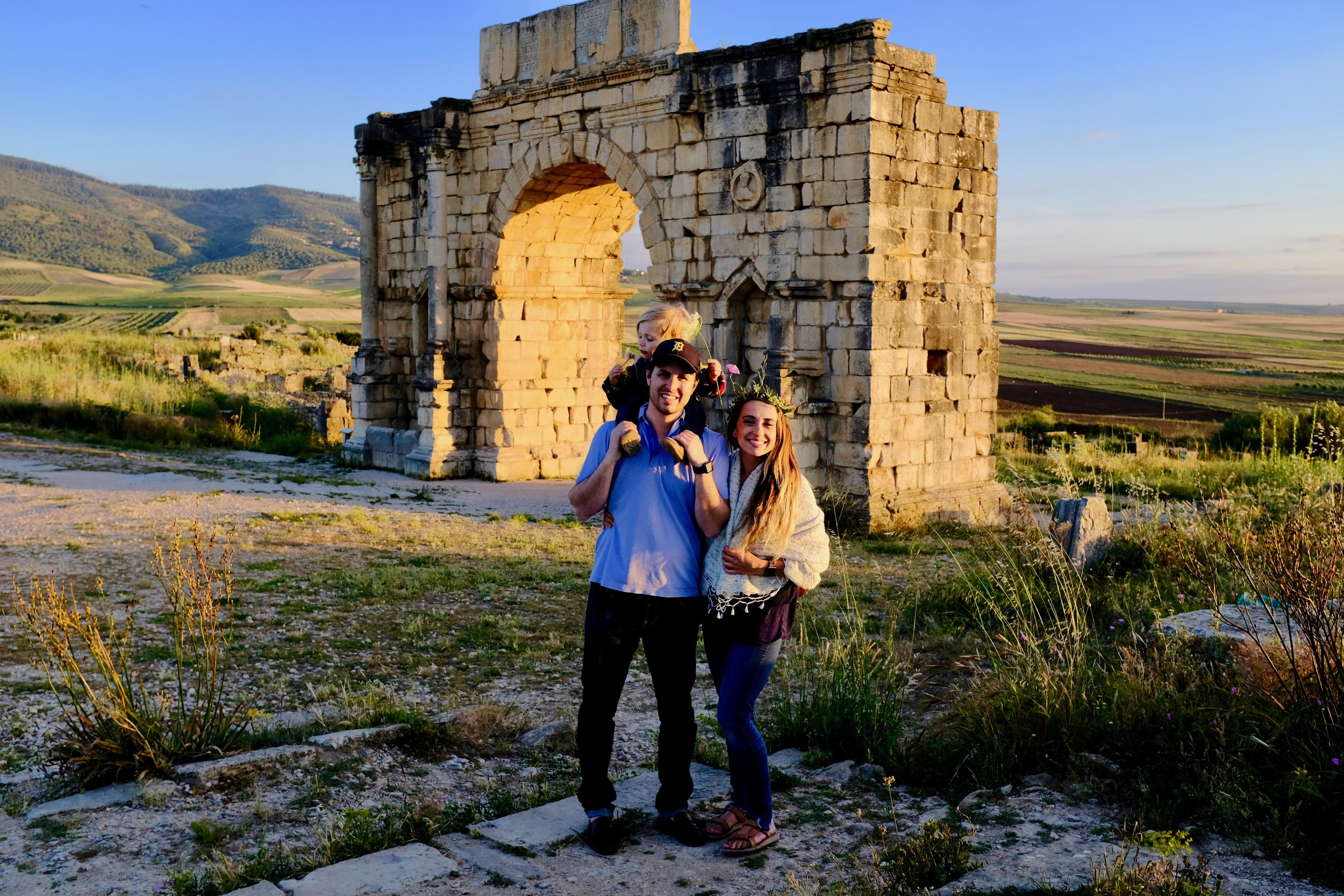 Volubilis_City Nibbler_Seville