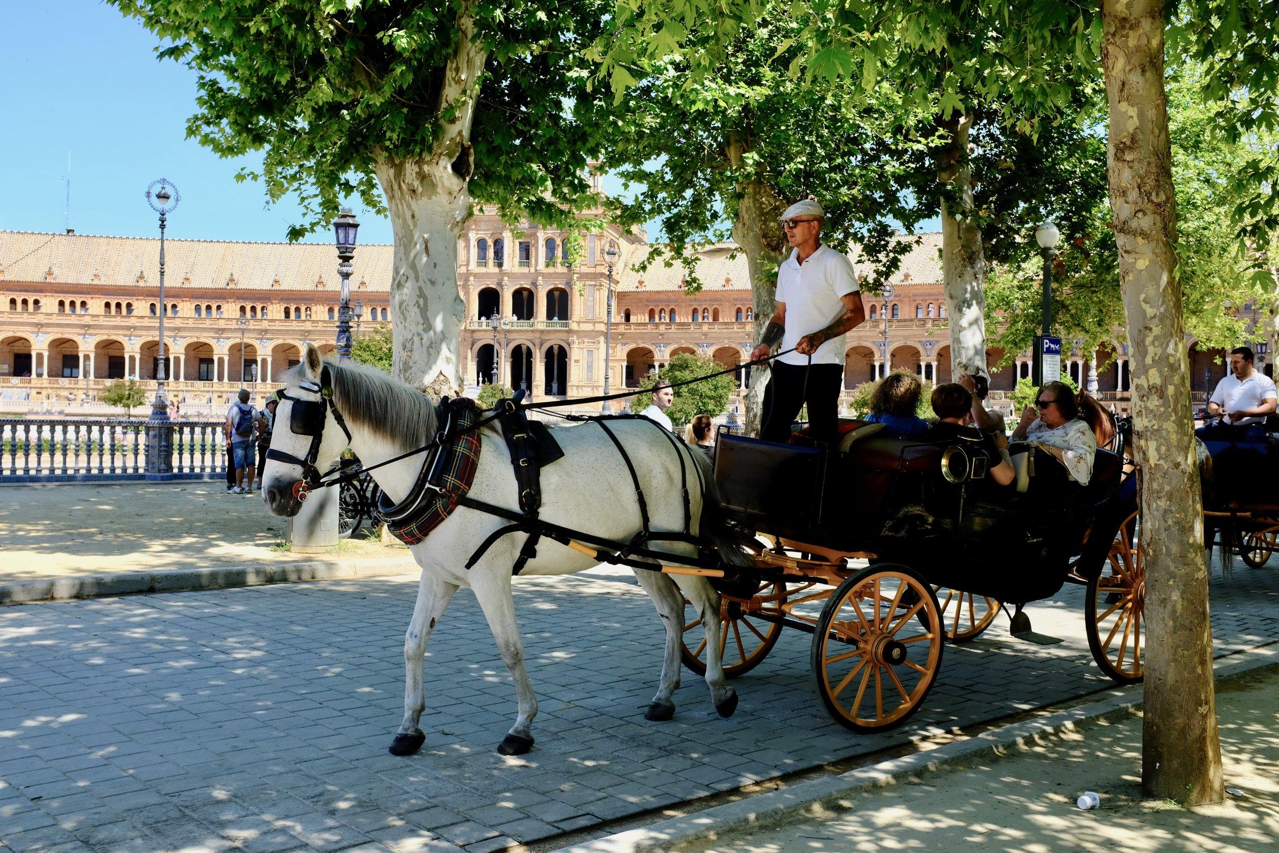 Horse drawn carriage ride through Plaza de España and Parque de Maria Luisa.