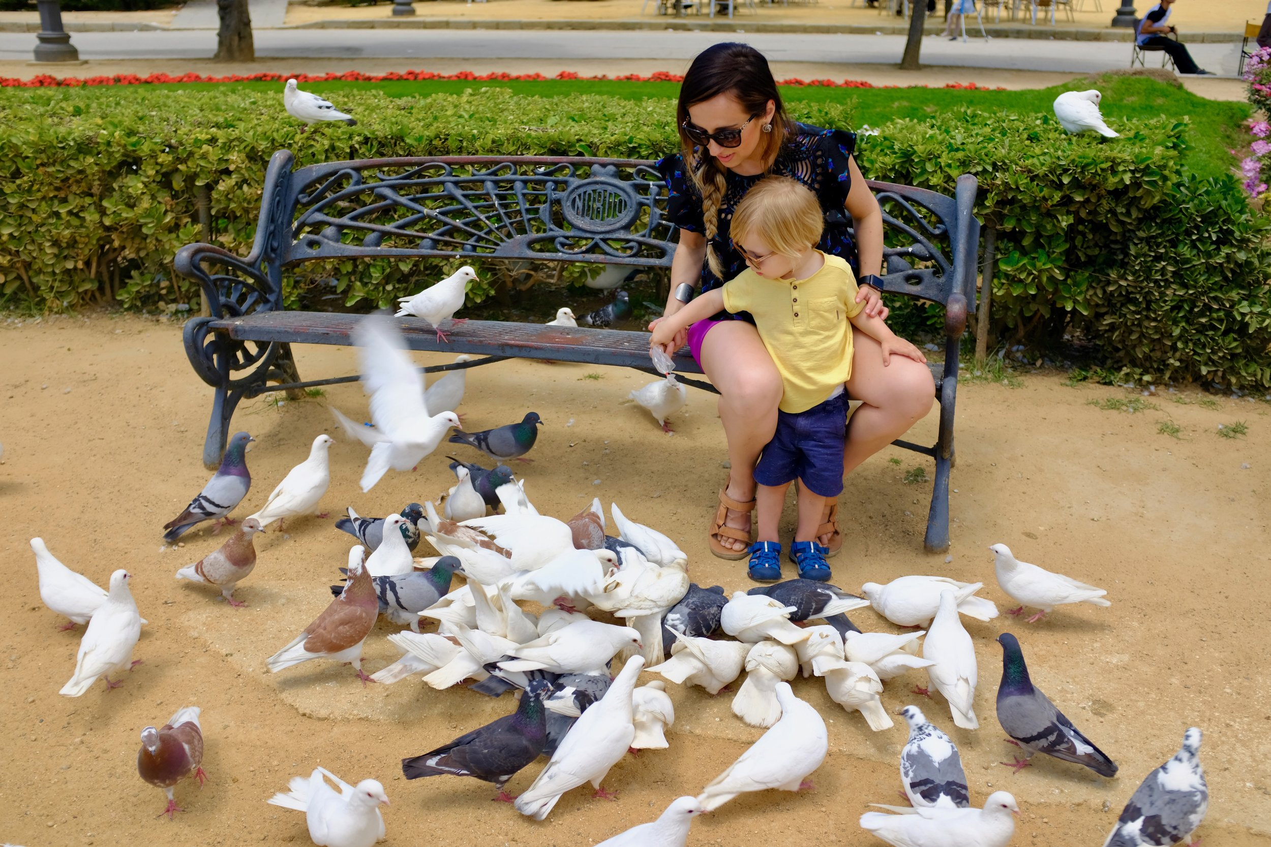 "Plaza de America, ""The Pigeon Park"""