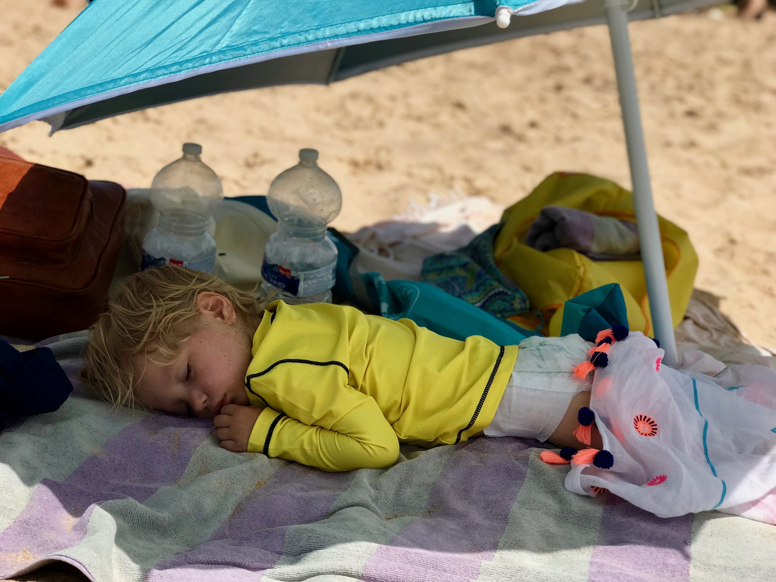 Jimmy napping at the beach.